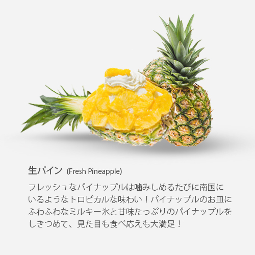 http://bncompany.babyblue.jp/website/snowyvillage/wp-content/uploads/2018/10/bings-pine.jpg